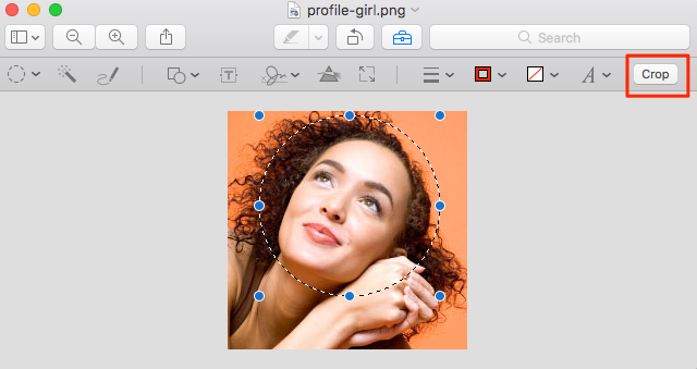 crop the profile image